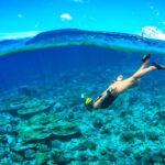 Snorkeling, descubriendo las bellezas bajo el mar
